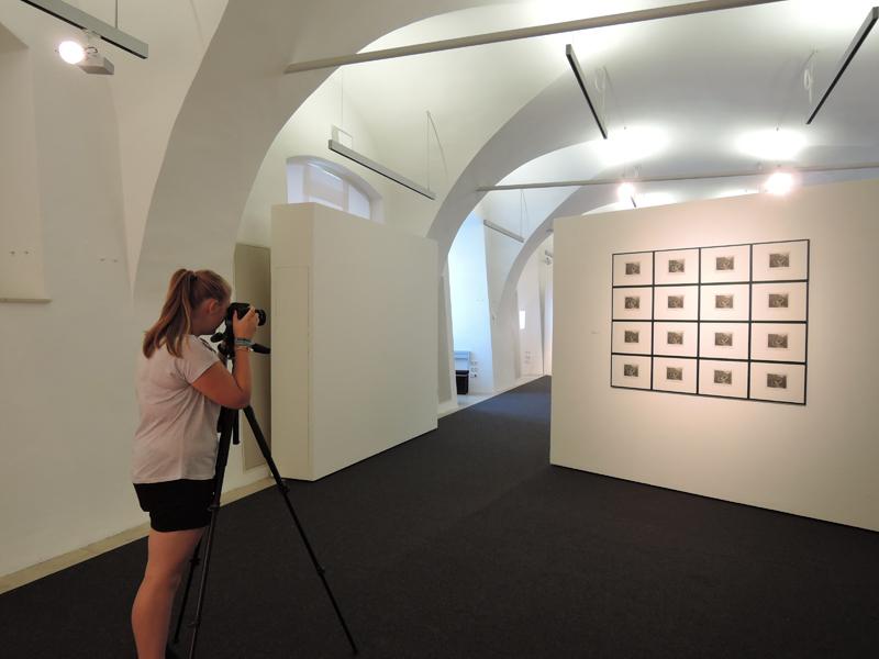 ... als Ausstellungs-Fotografin